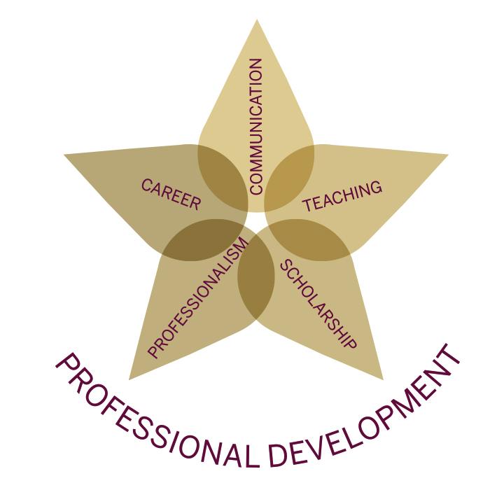 Professional Development Star Icon